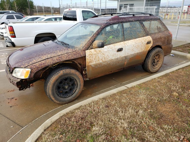 Found Some Mud Holes